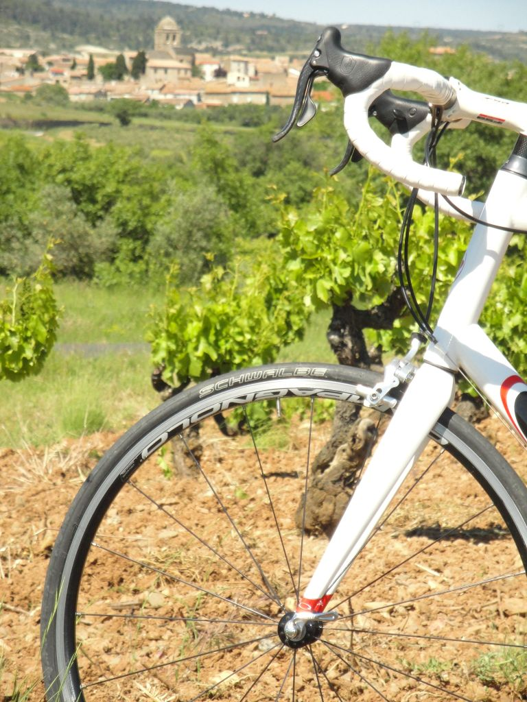 racefiets-in-de-wijnvelden-verkleind-1