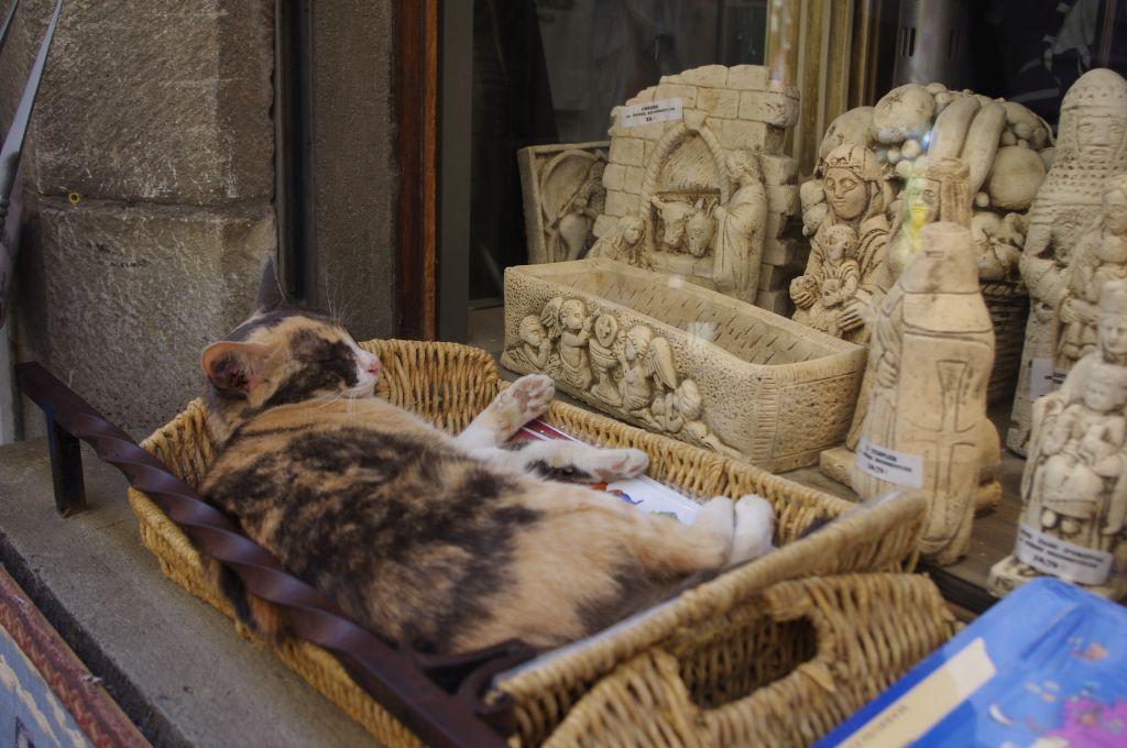 souvenirwinkel-Cite-Carcassonne-Aude