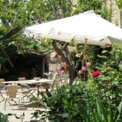 der Garten hinterm Haus mit großem Tisch und mehrere Sitzplätze