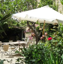 le jardin avec une grande table et plusieurs coins détente